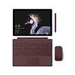 Microsoft Surface Pro Set Bordeauxrot Produktbild front S