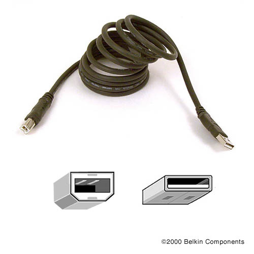 Belkin Pro Series Hi-Speed USB 2.0 Device Cable product photo front L